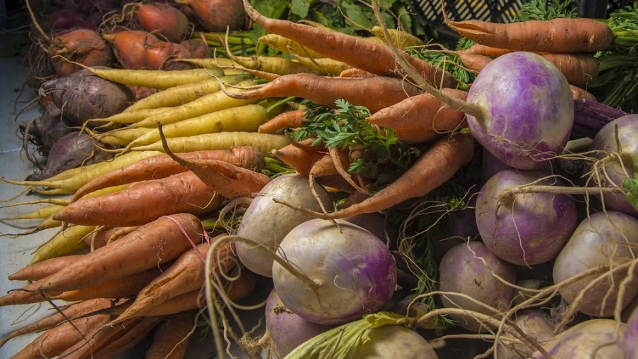 carrots for article