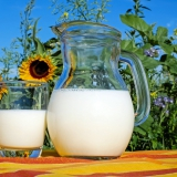 milk pitcher and cup