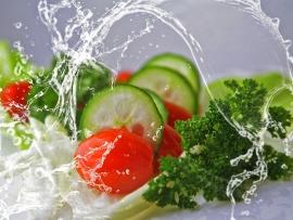salad article
