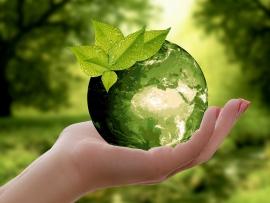sustainability June 5