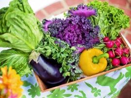 vegetables July 12 blog