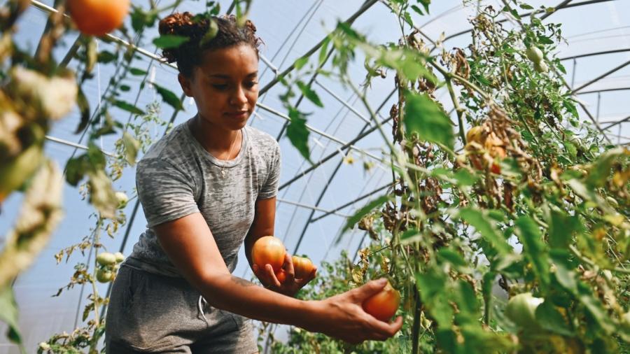black-farmers-1-1600x900